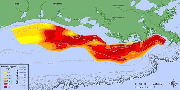 Spatial extent of the Gulf of Mexico dead zone in 2015. Image Credit: N. Rabalais and R. E. Turner via NOAA.