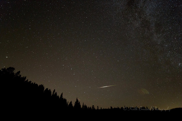 Night sky above evergreen forest with Big Dipper and white streak near horizon.