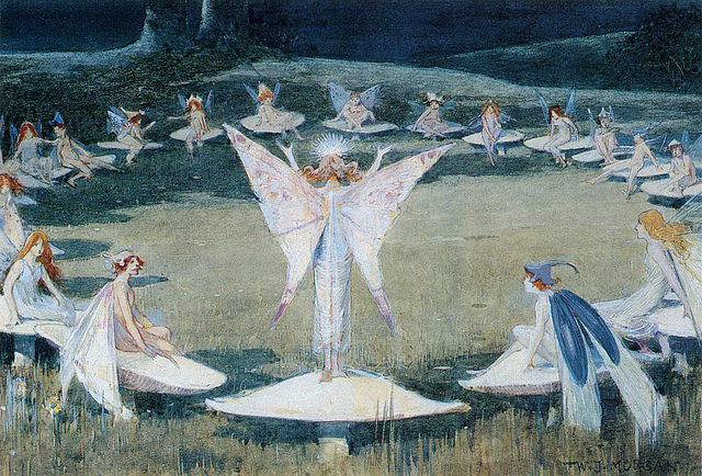 What is a fairy ring? | Earth | EarthSky