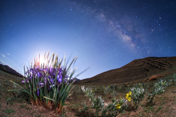 Iris by moonlight, from Yamdrok Lake, 4500 meters (14,700 feet) above sea level, under the rising last quarter moon. The name Iris is taken from the Greek word for a rainbow. View larger and read more.