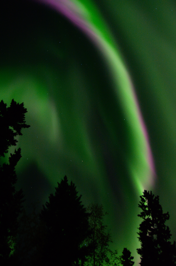 Lee Petersen captured this photo on the night of September 10 from Fairbanks, Alaska.  Amazing color!  Visit Lee Petersen Photo on Facebook to see the rest of this night's album.
