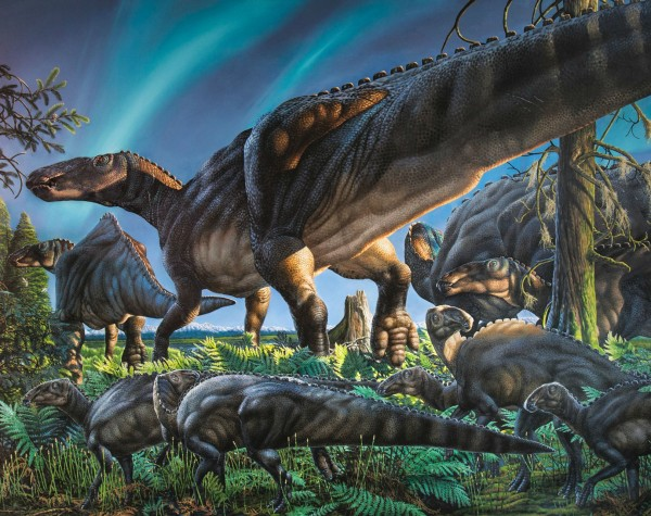 This original painting by James Havens of Ugrunaaluk kuukpikensis, the new species of duck-billed dinosaur, illustrates a scene from ancient Alaska during the Cretaceous Period.