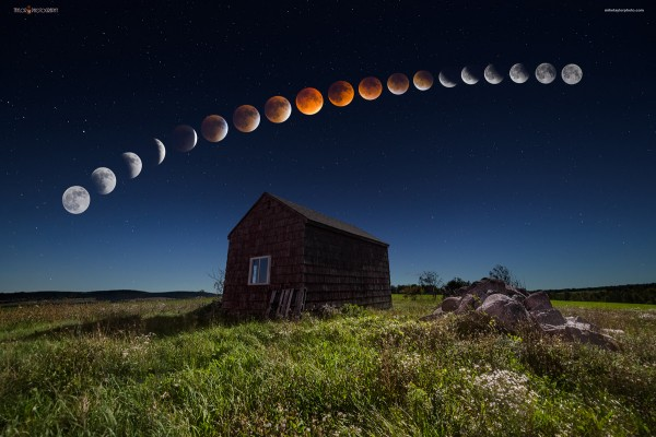 row of moons from full to full with red-orange eclipsed moon in the middle.