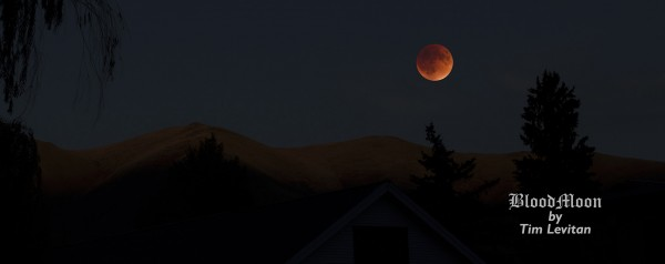 Total eclipse over Sun Valley, Idaho from Tim Levitan.