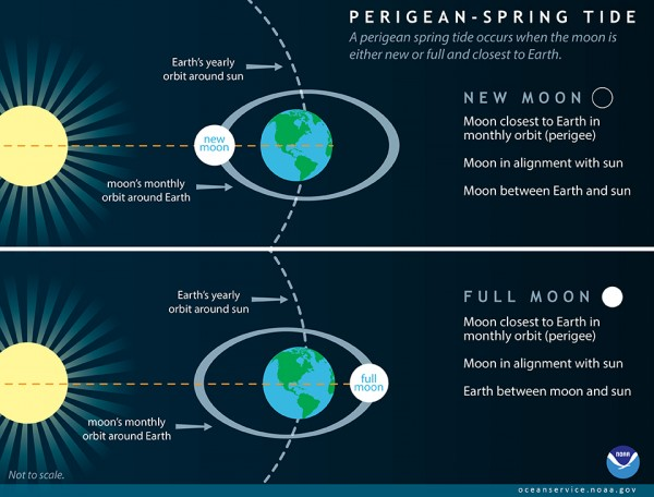 View larger. | Perigean spring tides - aka supermoon tides - explained, via NOAA.