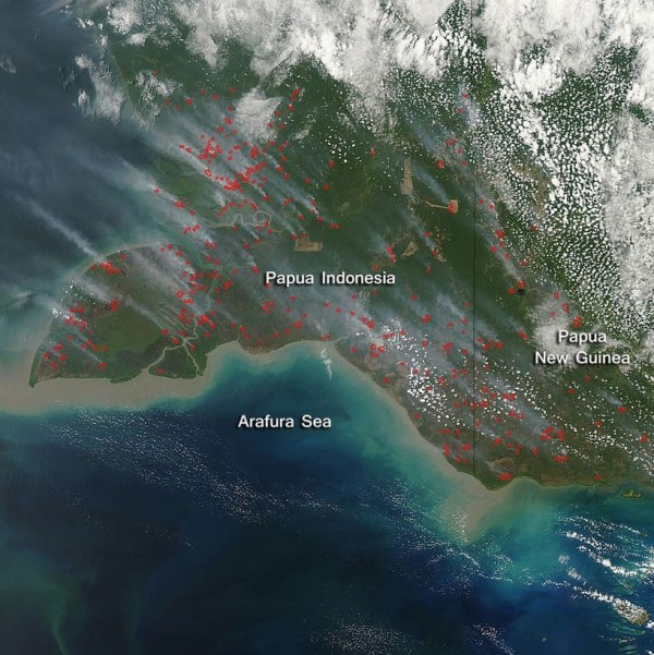 View larger. | Natural-color image acquired the Aqua satellite on September 24, 2015. Actively burning areas are outlined in red and there is significant smoke rising from these areas and blowing northwest.  NASA image courtesy Jeff Schmaltz, MODIS Rapid Response Team.
