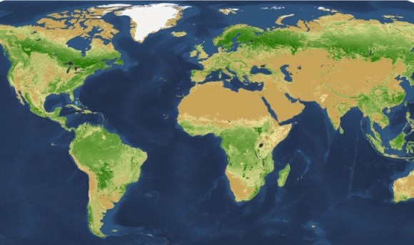 Using a combination of satellite imagery, forest inventories, and supercomputer technologies, the researchers were able to produce a global map of tree density at the square-kilometer pixel scale. Image credit: Image courtesy of Yale School of Forestry & Environmental Studies