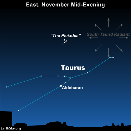 Star chart of constellation Taurus with radial arrows from point near one end.