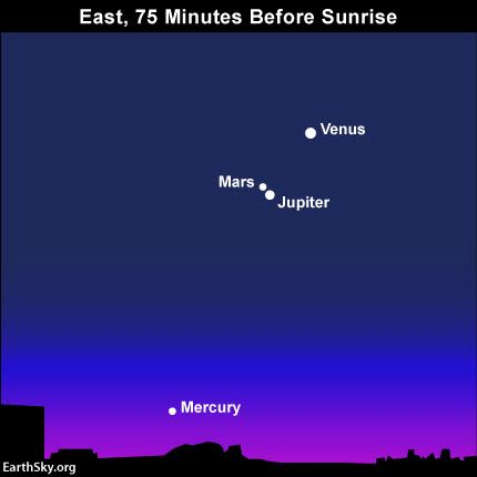 Jupiter will be in conjunction with Mars on October 17, 2015. If you have trouble seeing Mars in the morning sky, aim them at Jupiter to spot Mars nearby. Mars and Jupiter will share the same binocular field from about October 12 to nearly the end of the month.. Read more.