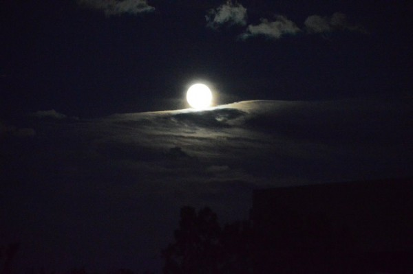 Moon on a cloud. Photo: Dinh Nguyen