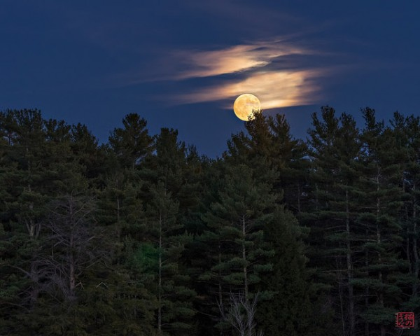 Lynne Pitts took this photo in New Hampshire on October 26, 2015.  Lynne wrote,