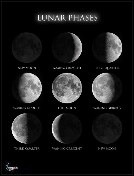 Nine photos of the moon going through its different phases.