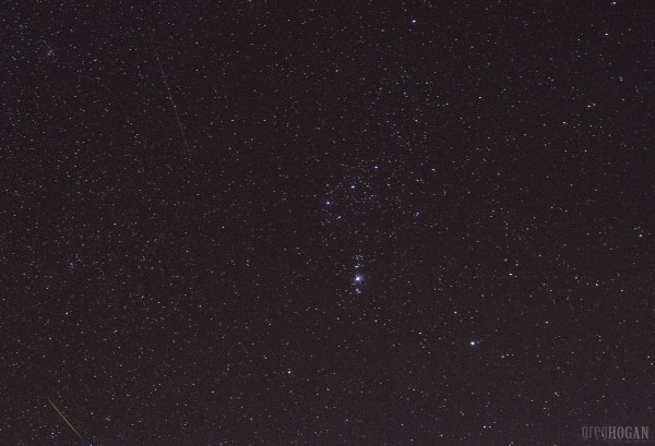 Orionids in Orion, from Greg Hogan in Kathleen, Georgia.  Taken on the morning of October 22, 2015.