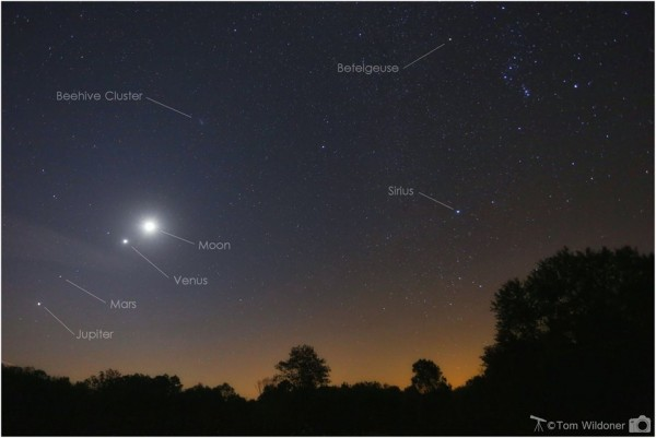Moon, Venus and more on October 8 by Tom Wildoner.