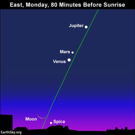 Draw an imaginary line from Jupiter through Venus to spot the moon and Spica near the horizon. The green line depicts the ecliptic - Earth's orbital plane projected onto the celestial sphere.