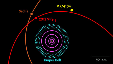 We don't yet know the orbit of the distant object V774104. Within a year, astronomers hope to determine it. The outermost pink circle here denotes Neptune's orbit. Image via Scott Sheppard / Carnegie Inst. for Science / skyandtelescope.com.