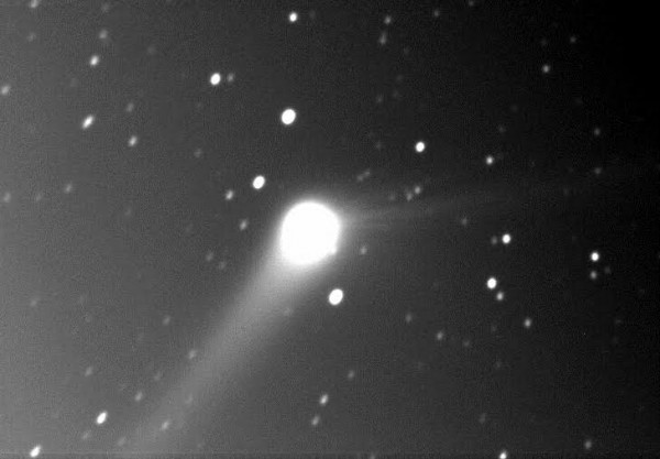 A new image taken by Douglas T. Durig this morning - November 23, 2015. Notice the two tails.
