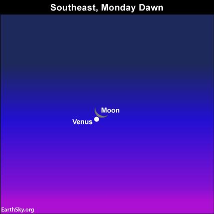 Most of us will see Venus extremely near the moon on the morning of December 7.  They will be wonderful!