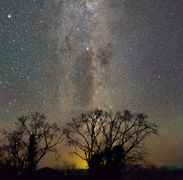 The Dreamtime constellation of The Emu rises out of the glow of Sydney, 350km away from the Australian Astronomical Observatory. Image credit: David Malin