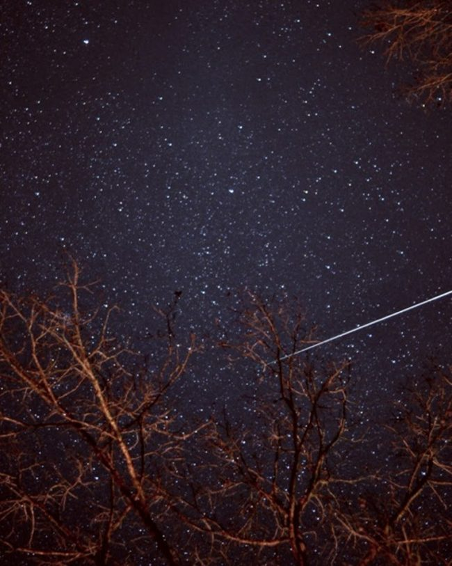 Very bright meteor trail in densely starry sky behind bare trees.