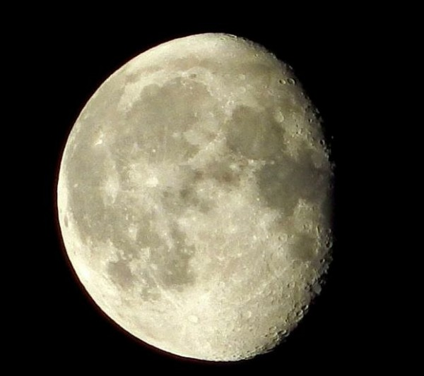 This morning's waning gibbous moon - December 29, 2015 - from Deirdre Horan in Ireland.