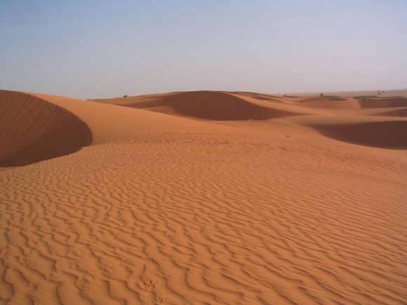 Sand dunes in Mauritania, the site of the current study. Image Credit: Ji Elle via Wikimedia.
