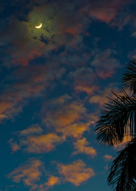 Asthadi Setyawan caught the pair as a beautiful sunrise was in progress in Malang, East Java, Indonesia.
