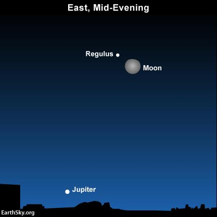 2016-january25-moon-regulus-jupiter