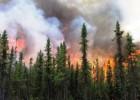 aggiecrk-wildfire-07072015-usfs-300