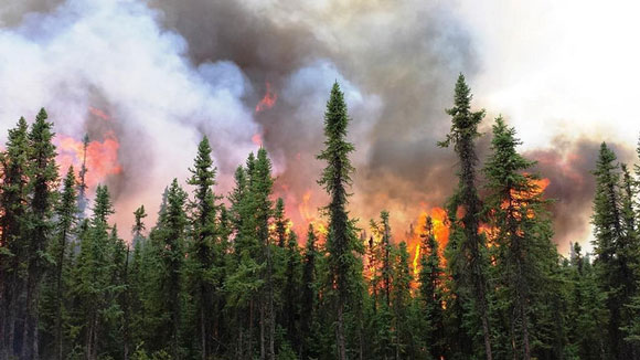 Aggie Creek Fire, Alaska. A lightning strike started the fire on June 22, 2015. Image Credit: U.S. Forest Service.