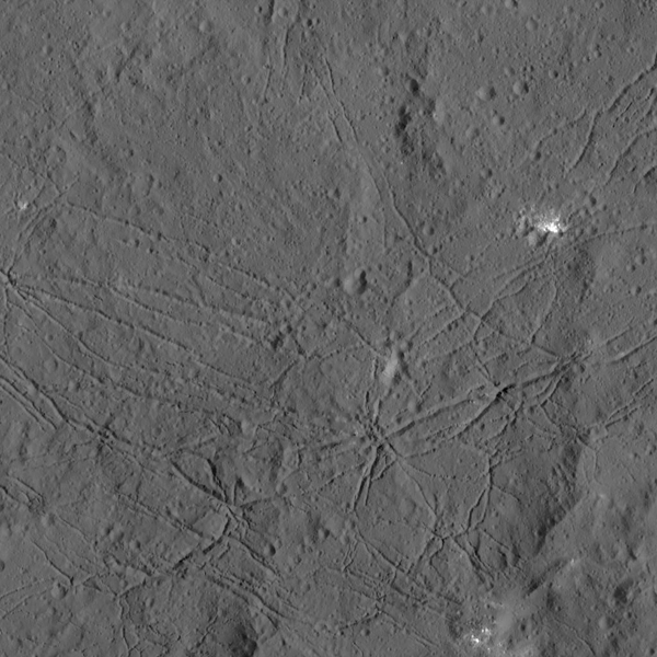 View larger.   The fractured floor of Dantu Crater on Ceres