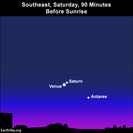 Saturn and Venus are in conjunction, near the star Antares, on January 9. Read more