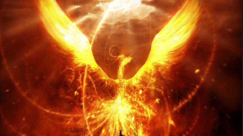 Red Phoenix, aka Vermilion Bird. Image via fantasticanimals.wordpress.com.