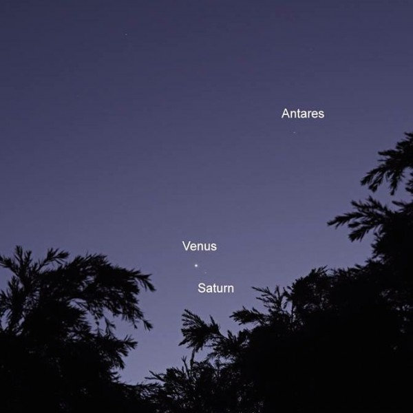 Venus and Saturn on January 9, 2016 by Stephen Marceau in eastern Australia.