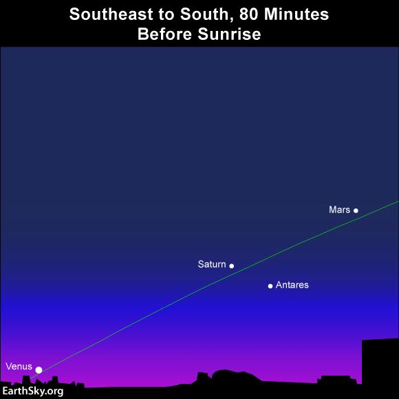 Venus enters the sky before Mercury does. Mercury follows Venus into the sky roughly 15 to 20 minutes later.