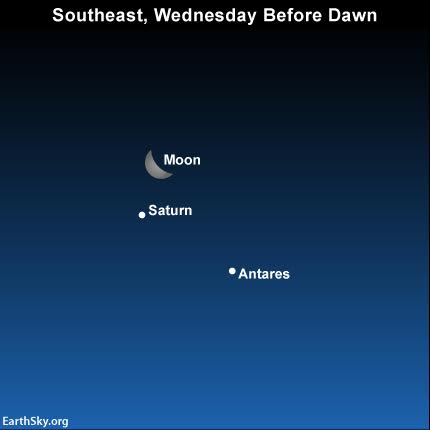 2016-february-2-moon-saturn-antares