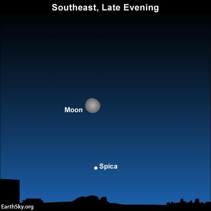 2016-february-25-moon-and-spica