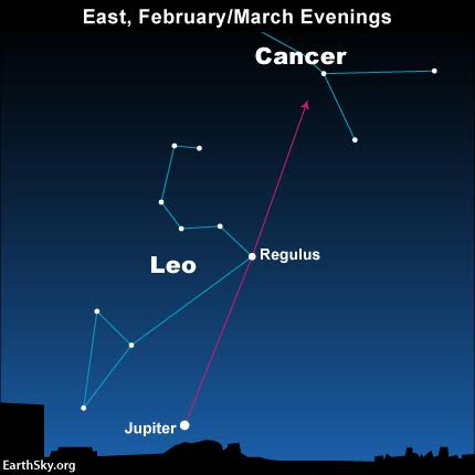 This year, in 2016, we can draw an imaginary line from the dazzling planet Jupiter through the star Regulus to locate the constellation Cancer.