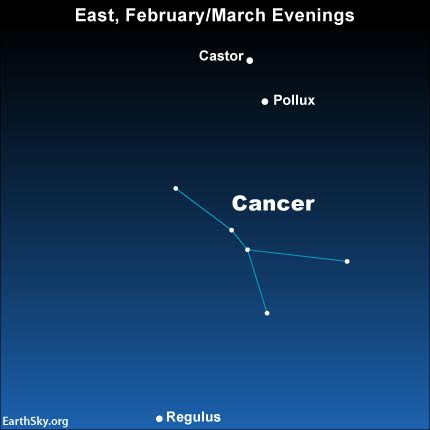 In any year, you can locate the faint constellation Cancer the Crab in between, Regulus, the brightest star in Leo, and the the Gemini star, Castor and Pollux.