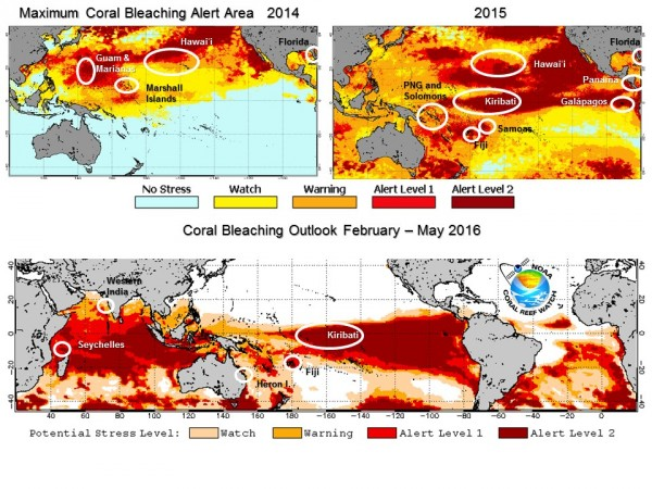 View larger. |  The top images show the maximum thermal stress levels measured by NOAA satellites in 2014 and 2015 along with locations where the worst coral bleaching was reported. The bottom image shows the Four Month Bleaching Outlook for February-May 2016 based on the NOAA Climate Forecast System model along with locations. Image credit: NOAA