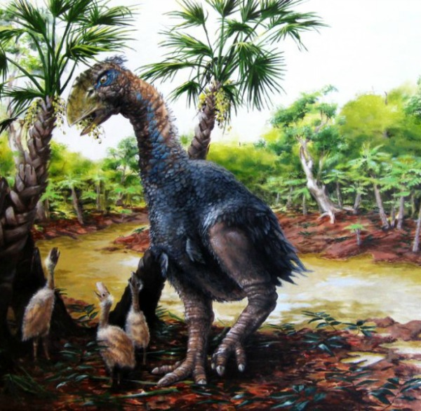 A new study has confirmed that a flightless bird weighing several hundred pounds roamed Ellesmere Island in the high Arctic about 50 million years ago. Image credit: Illustration by Marlin Peterson
