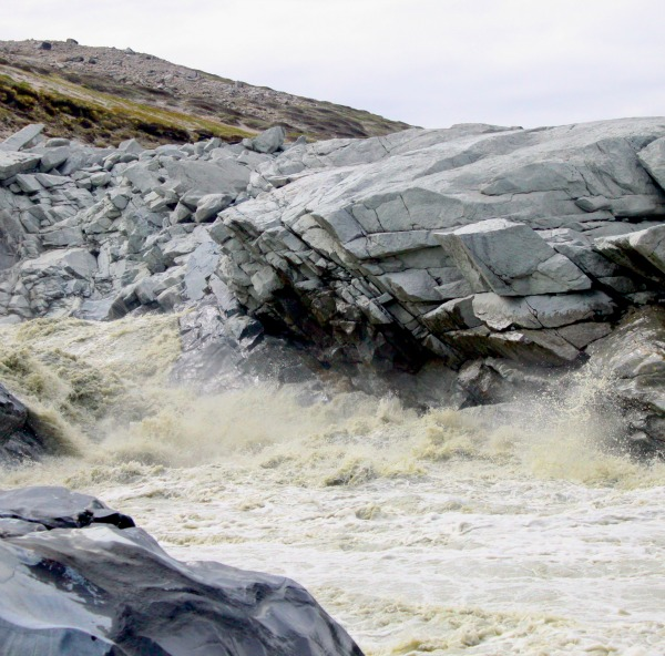 The sediment-rich meltwater river originating from Leverett Glacier in southwest Greenland, pictured in June 2012. Photo credit: Jon Hawkings