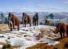 megafauna-pleistocene-300