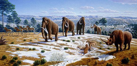 European fauna of the Pleistocene epoch. Image Credit: Mauricio Anton via PLoS Biology 6(4): e99.