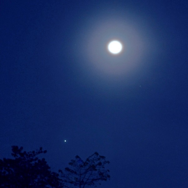 Full moon near Jupiter in 2014 via EarthSky Facebook friend JV Noriega in the Philippines.