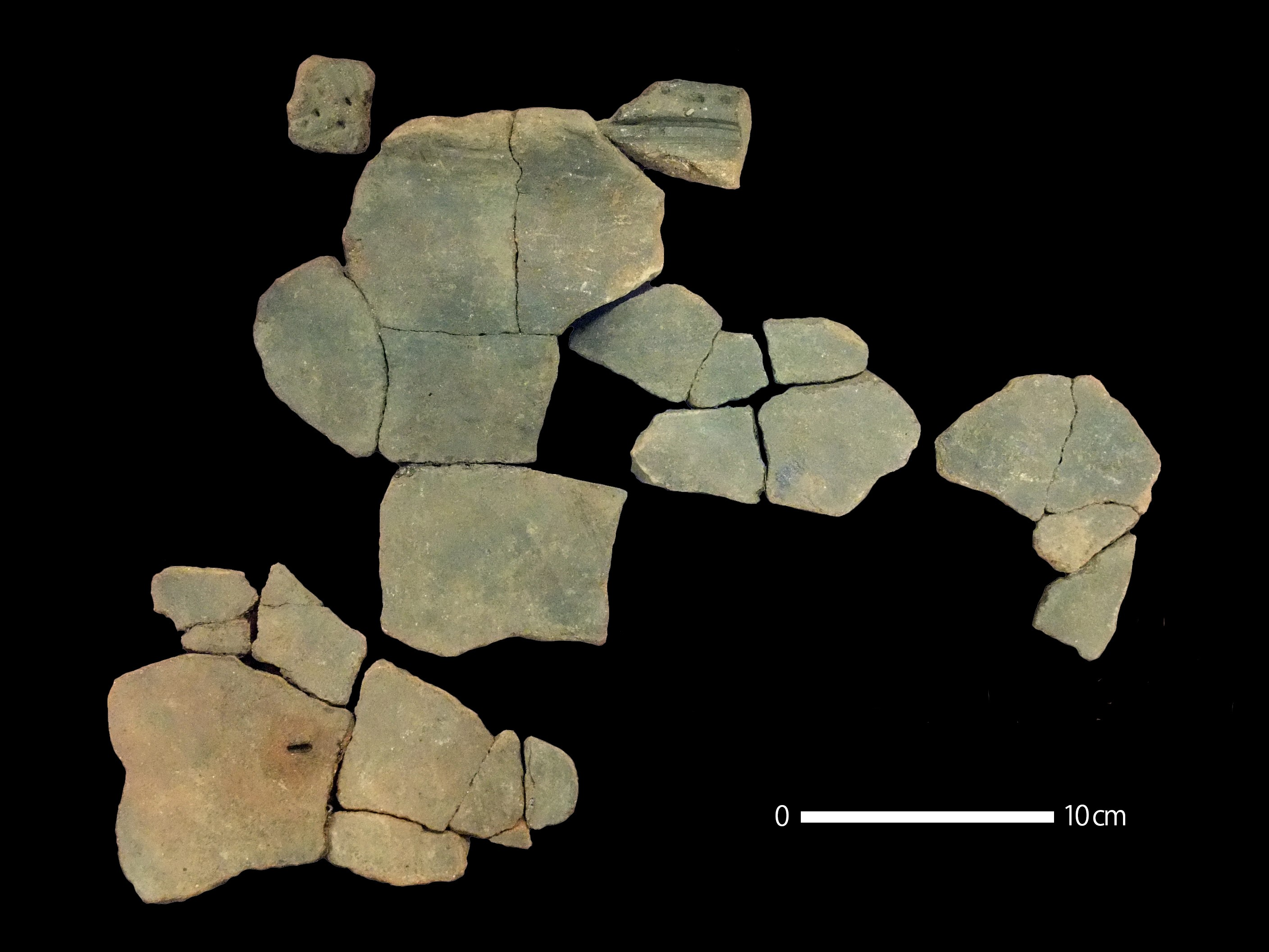 Pottery pieces that had cockroach egg impressions. Image credit: Prof. Hiroki Obata