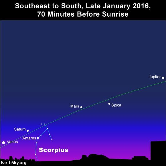 In early 2016, look for Saturn near the bright red star Antares - also called the Heart of the Scorpion - and the little arc of stars above Antares, known as the Scorpion's Crown.