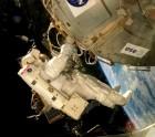 square-Antarctic-fungi-astronaut-ISS