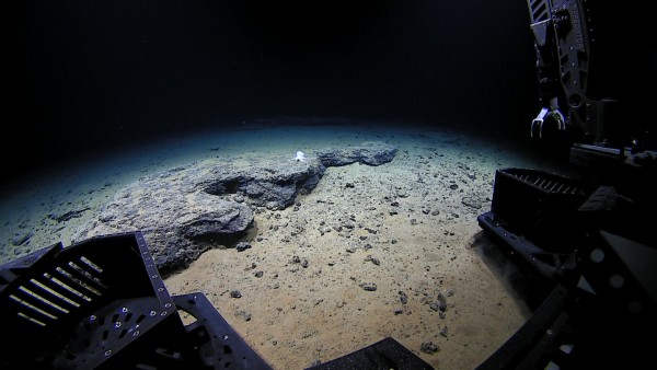 ROV Deep Discoverer approaches the unknown octopod at 4,290 meters depth. Image courtesy of the NOAA Office of Ocean Exploration and Research, Hohonu Moana 2016.