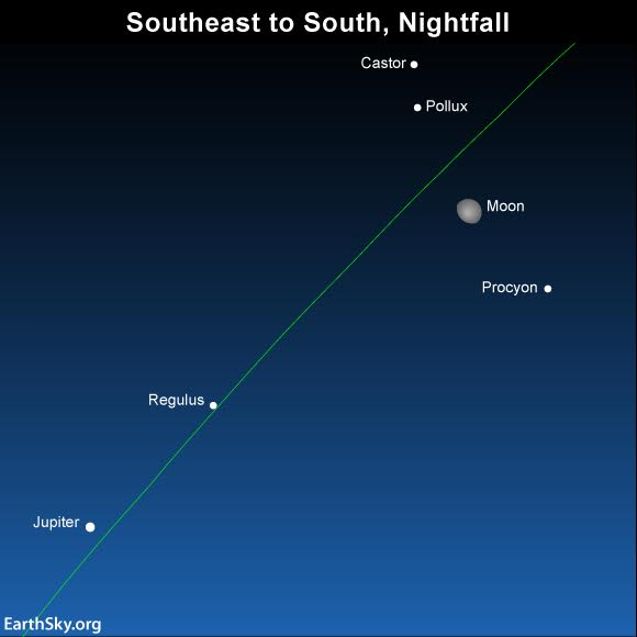 As darkness falls, look in the east for the dazzling planet Jupiter. Look in between the moon and Jupiter for Regulus, the constellation Leo's brightest star. The green line depicts the ecliptic -  the sun's yearly path in front of the constellations of the Zodiac.